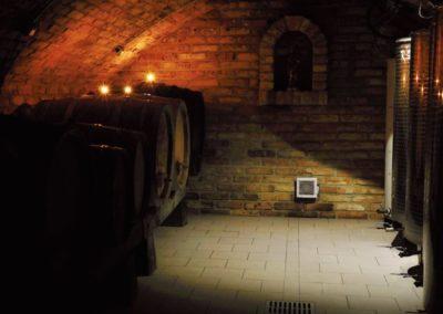 vino-klima-galerie5